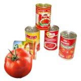 ketchup enlatada 400g da pasta de tomate