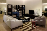 Il sofà moderno del tessuto del salone della mobilia del sofà di stile ha impostato (D-76A & B & C)