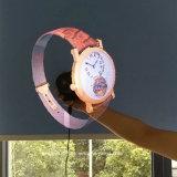 Proiettore olografico dell'ologramma del ventilatore di alta risoluzione 42cm Hypervsn 3D LED per fare pubblicità