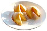 Bruiloft Fortune Cookies (004)