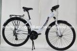 Modelo para Europa Bicicleta de Montaña con piezas de aleación de MTB-028