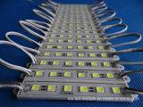 модуль 6LED IP68 5050 SMD СИД для рекламировать