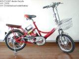 Il MCE ha approvato il libro agnetic del gioco della bici di E (KT-0712005)
