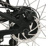 Mittler-Motorbergc$e-fahrrad mit 12 Punkte Doppelt-Hall Drehzahlgeber