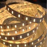 Striscia dell'indicatore luminoso di prezzi di fabbrica SMD 2835 LED con una garanzia da 3 anni
