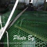 六角形の形の草の保護網