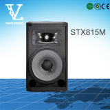Stx815m 15 '' 2-Way Audio Equipment como Monitores de escenario