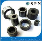 堅い亜鉄酸塩の磁石の異方性Multipole Motroのリング
