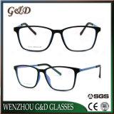 Het populaire Tr90 Optische Frame Van uitstekende kwaliteit T5015 van het Oogglas van Eyewear van Glazen
