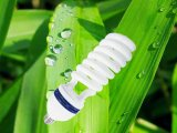 6t 튼튼한 절반 나선형 에너지 절약 램프 LED 전구