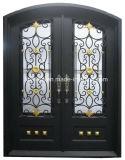 Bello portello del ferro saldato di Luxlury doppio con la verniciatura doppia della lastra di vetro