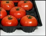 New Style México Market Hot Sale Blister Termoformado 15 lbs PP Tomate Packing Tray Liners com FDA Attestation
