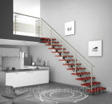 Acero inoxidable impresionante escalera barandillas de gran tamaño / acero inoxidable Escalera / Escalera