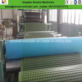 Espulsione dello strato della scheda di protezione di drenaggio dell'HDPE/linea di produzione d'impermeabilizzazione