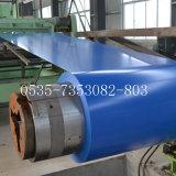 Acciaio galvanizzato preverniciato materiale d'acciaio Dx51d della lamiera sottile
