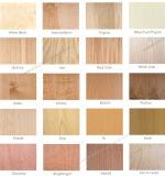 Contre-plaqué normal de placage de fantaisie de teck/cendre/érable/chêne rouge/cerise de bouleau de faisceau de peuplier de bois dur