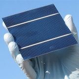 Cella di comitato solare superiore del venditore 156*156 della Cina poli