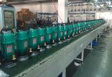 Submersíveis bomba eléctrica de água com o interruptor de flutuação do Novo Tipo de série Qdx
