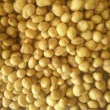Golden fournisseur de pommes de terre fraîches en provenance de Chine