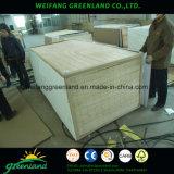 12mm Sloted madera contrachapada, núcleo de madera fenólica, pegamento y la película de Okume