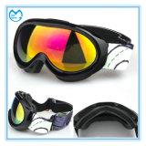 Óculos de proteção do inverno da lente do PC da névoa dos vidros dos esportes anti para a snowboarding