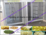 Sprout de feijão Sprout Sprouting Growing Planting Processing Machine