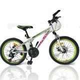 Серия из углеродистой стали с переменной частотой вращения горный велосипед (MTB-025)