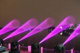 350W luz principal móvil de la etapa de la viga al aire libre/de interior de 17r