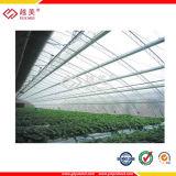 Hoja hueco del material para techos del invernadero del policarbonato de Lowes