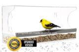 Одичалый фидер птицы сделанный в изготовлении Китая с самым лучшим ценой