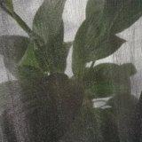 Shinny le tissu de Tulle