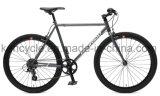 [700ك] 7 سرعة [كر-مو] فولاذ ثابت ترس درّاجة /Versatile طريق درّاجة لأنّ بالغ درّاجة وطالب/طريق يتسابق درّاجة/أسلوب حياة درّاجة