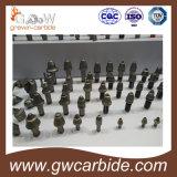 Morceaux de coupeurs de charbon et de route de carbure de tungstène
