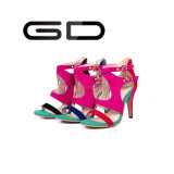 Supply Big Size Boucles Style Sandales à talons hauts colorés Chaussures Ladies