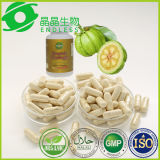 Capsule Burning grasse del corpo di supplemento di Garcinia della capsula organica della Cambogia