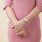 Montre imperméable à l'eau ultra-mince à haute teneur neuve de quartz d'acier inoxydable de montre de dames de montre de bracelet de Belbi