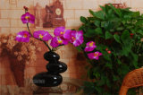 De creatieve Ritselen van het Ijs verglaasden Creatieve Vaas van Ornmaments van de Vaas van de Bloem van het Tafelblad van de Vaas van de Vorm van de Bekleding van Drie Stenen de Ceramische zonder Bloem