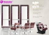 شعبيّة [هيغقوليتي] صالون مرآة [بربر شير] صالون كرسي تثبيت ([ب2012ف])