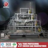 Конструкция оборудования цыплятины машинного оборудования фермы автоматическая для фермы слоя (A4L160)