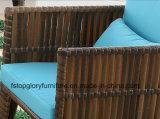 セットされる藤の庭の家具の屋外のソファー(TG-1299)