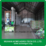 AMCT20TPD conjunto completo de la máquina molino de arroz
