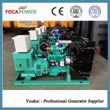 производить электрического генератора силы 24kVA тепловозный
