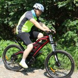 26 Zoll 36V 250W das meiste Eco Gebirgselektrische Fahrrad