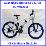 Bafang 동유럽 시장을%s 후방 모터 36V 250W 최고 선택을%s 가진 MTB 작풍 전기 자전거