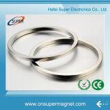 Выдвиженческий спеченный магнит кольца неодимия