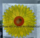 Windows 스티커 꽃 비행거리 함정 (PM243)