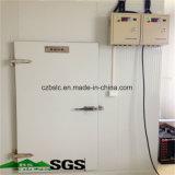 Conservación en cámara frigorífica, Freeezer profundo, cámara fría, piezas de la refrigeración