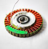 Motor sin cepillo del eje de la vespa del pequeño motor eléctrico de la C.C. del precio