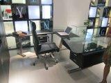 이용되는 사무실을%s 대중적인 새로운 디자인 오피스 책 내각 (G07)