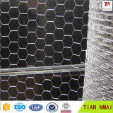 안핑 Tian Mai 공장에서 직류 전기를 통한 6각형 철망사
